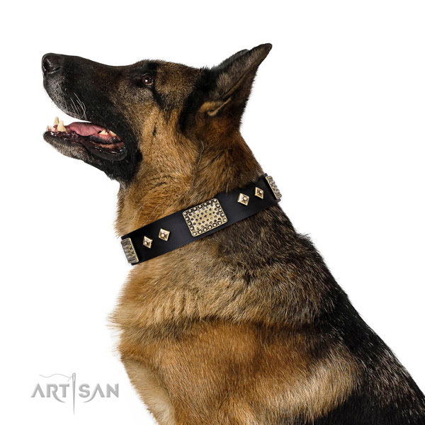 Top rate walking dog collar of genuine leather