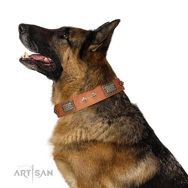 Easy wearing dog collar of genuine leather with extraordinary decorations