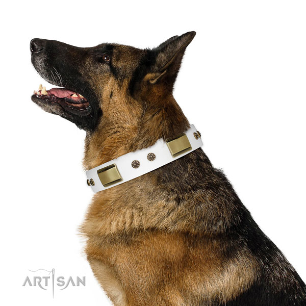 Basic training dog collar of leather with stunning decorations