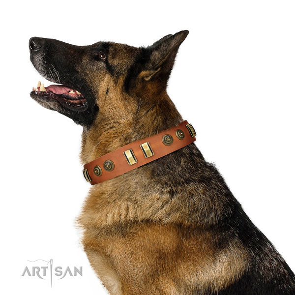 Reliable fittings on full grain natural leather dog collar for stylish walking
