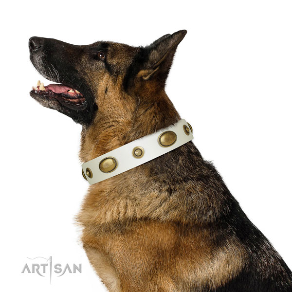 Everyday use dog collar of leather with awesome embellishments