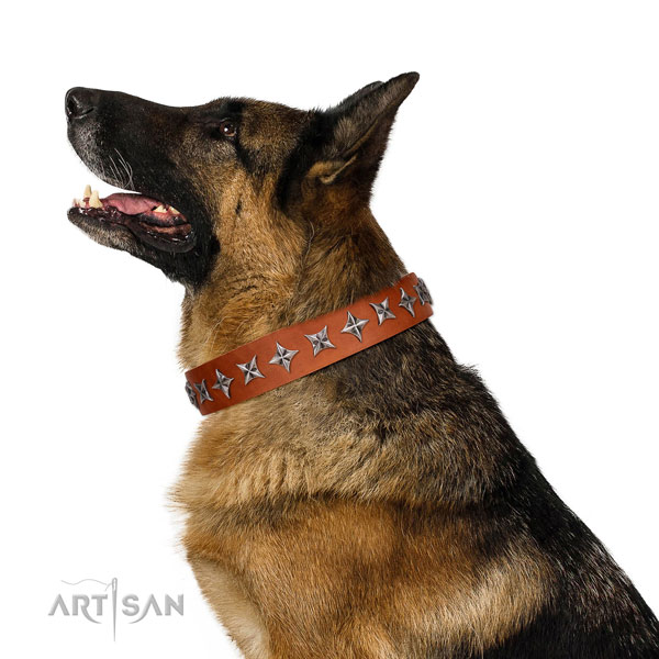 Basic training adorned dog collar of high quality genuine leather