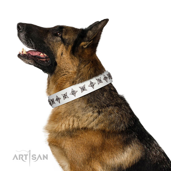High quality full grain genuine leather dog collar with remarkable decorations