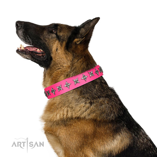 Fine quality leather dog collar with exceptional embellishments