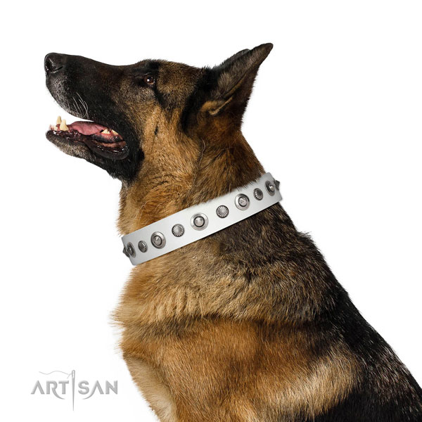 Full grain genuine leather collar with corrosion resistant buckle for your stylish pet