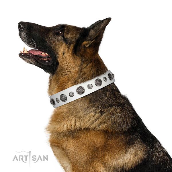 Top quality Full grain natural leather dog collar with corrosion proof traditional buckle