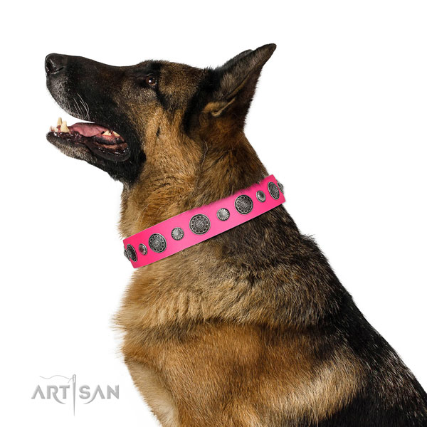 Easy to adjust genuine leather dog collar with rust-proof fittings