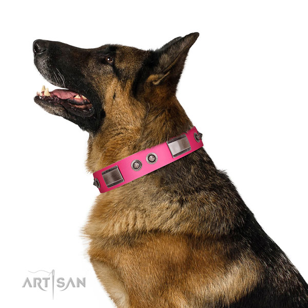 Stunning natural leather dog collar with adornments