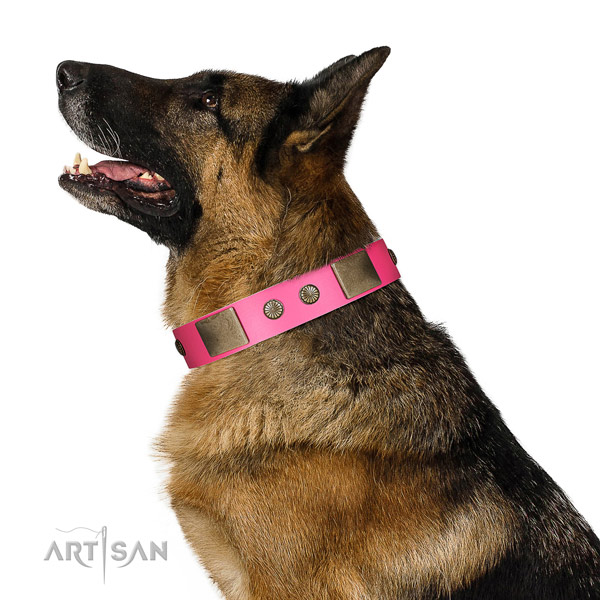 Durable fittings on natural leather dog collar for basic training