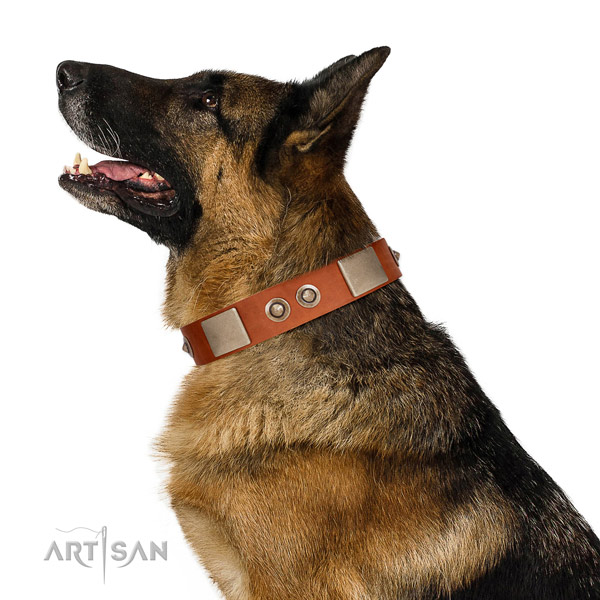 Rust-proof fittings on genuine leather dog collar for fancy walking