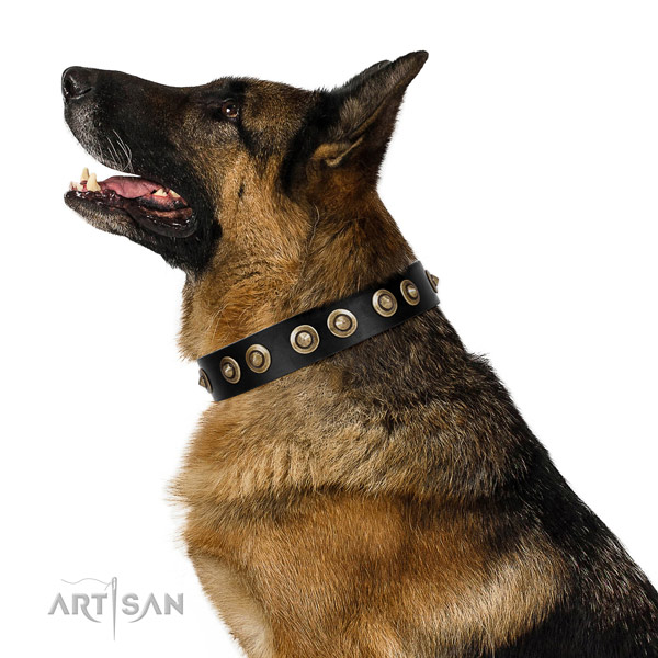 Easy wearing dog collar of genuine leather with stunning adornments