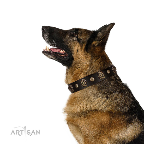 Easy to adjust leather collar for your impressive doggie