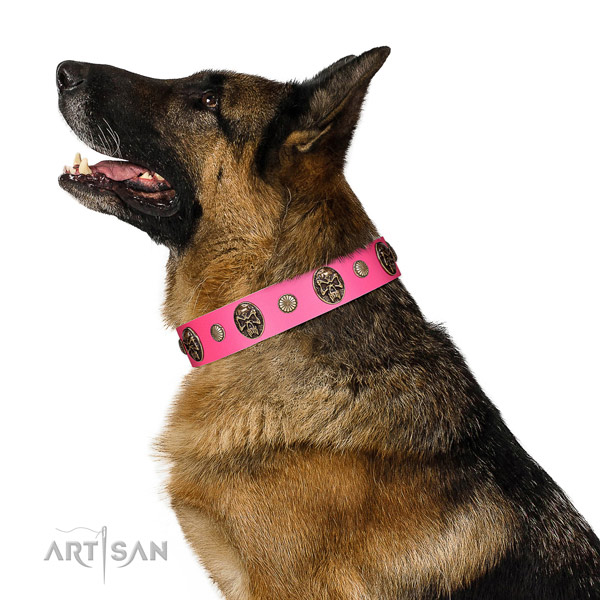 Corrosion resistant buckle on full grain leather dog collar for daily use