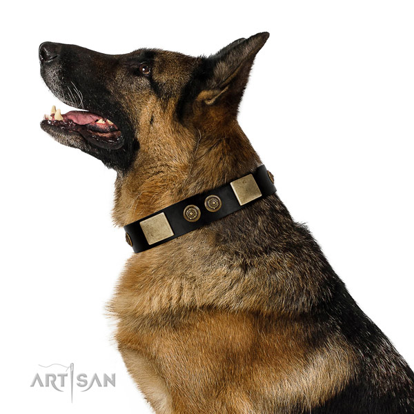 Corrosion proof buckle on genuine leather dog collar for comfy wearing