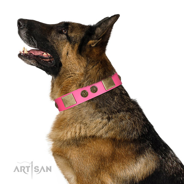 Embellished dog collar handcrafted for your stylish dog