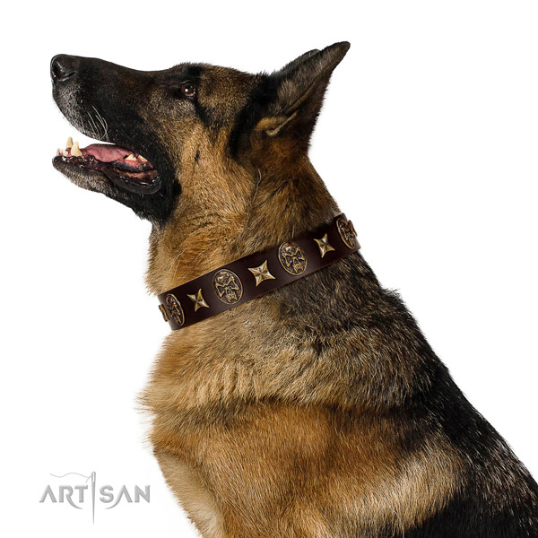 Comfortable wearing dog collar of natural leather with exquisite decorations