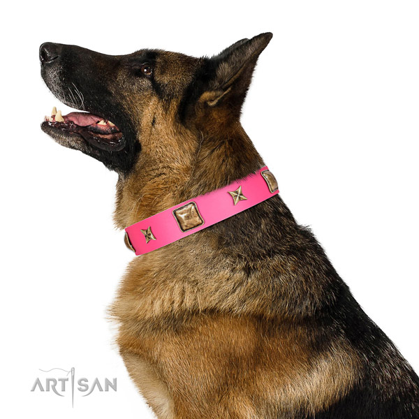 Full grain genuine leather dog collar of reliable material with awesome embellishments
