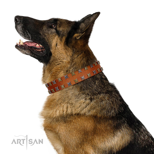 Quality full grain genuine leather dog collar with decorations for your doggie