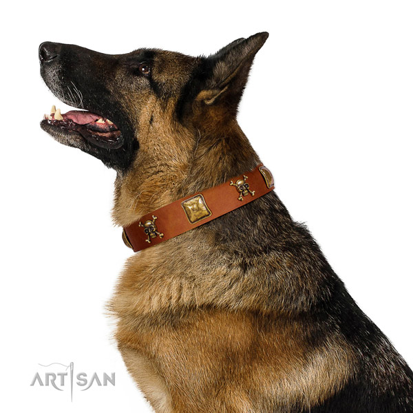 Trendy natural leather dog collar with strong adornments