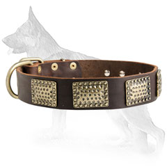 German Shepherd Dog Collar Decorated Brass Plates