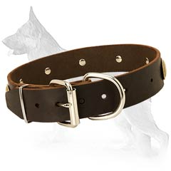 Ideal German Shepherd Dog Collar