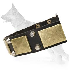 Superb German Shepherd Dog Collar