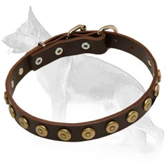 Elegant German Shepherd Dog Collar
