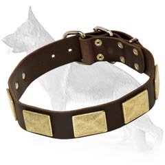 Excellent German Shepherd Dog Collar