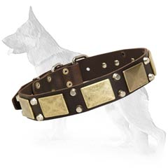 Fair German Shepherd Dog Collar