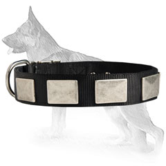 Comfy German Shepherd Dog Collar