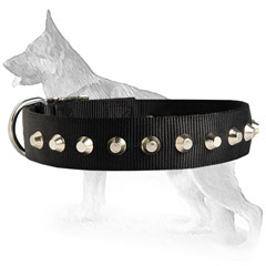 German Shepherd Dog Collar With Ultimate Comfort