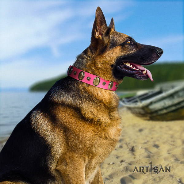 German Shepherd Dog stylish design decorated full grain natural leather dog collar