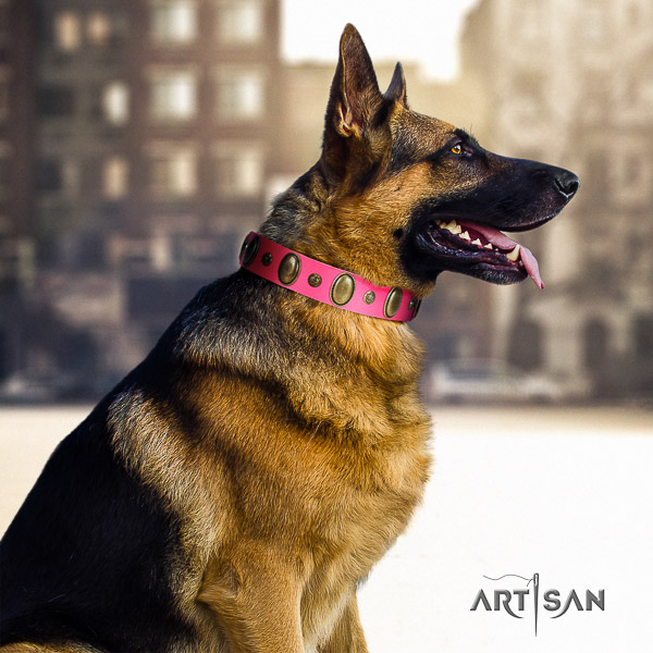 German Shepherd Dog inimitable adorned leather dog collar