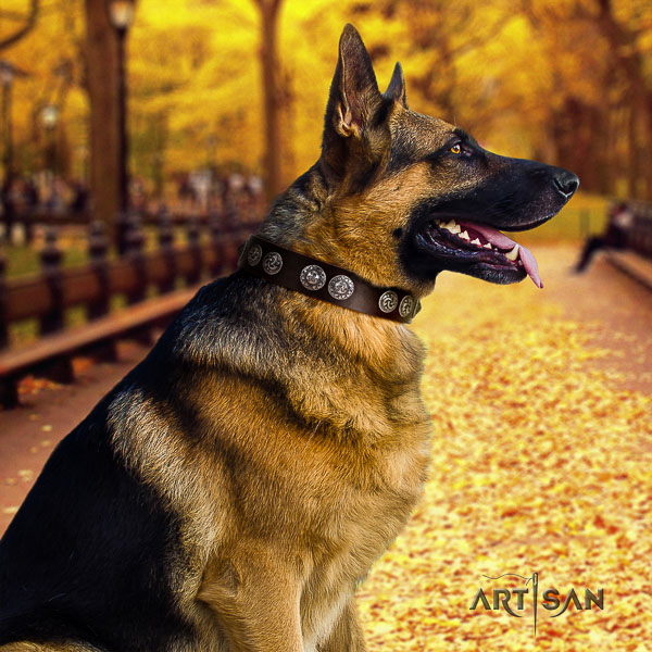 German Shepherd Dog unusual decorated leather dog collar for comfortable wearing