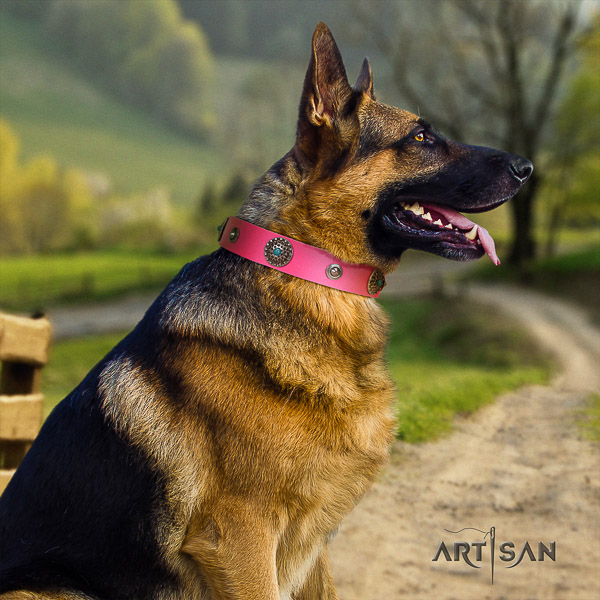 German Shepherd Dog remarkable adorned natural leather dog collar for everyday use