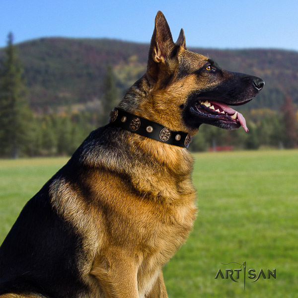 German Shepherd Dog designer embellished leather dog collar