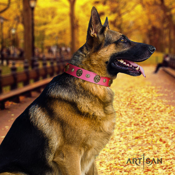 German Shepherd Dog top notch decorated genuine leather dog collar