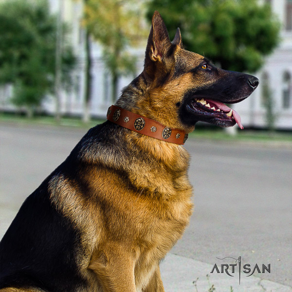 German Shepherd Dog impressive adorned natural genuine leather dog collar