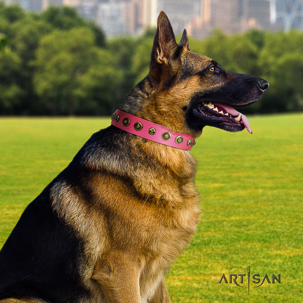 German Shepherd Dog impressive decorated full grain genuine leather dog collar