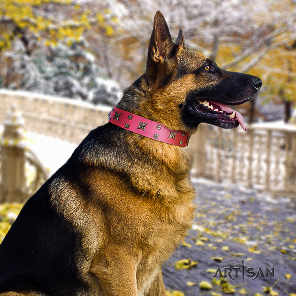 German Shepherd Dog stylish studded full grain genuine leather dog collar for walking