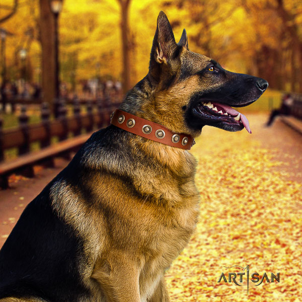 German Shepherd Dog unusual decorated full grain leather dog collar