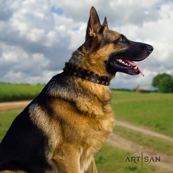 German Shepherd Dog stunning adorned leather dog collar