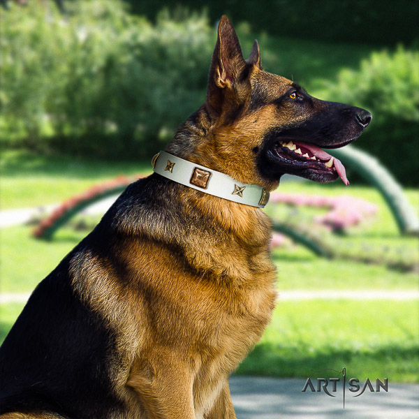 German Shepherd Dog designer adorned full grain natural leather dog collar