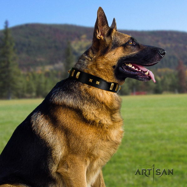 German Shepherd Dog fashionable embellished leather dog collar