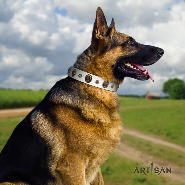 German Shepherd Dog unusual embellished full grain leather dog collar