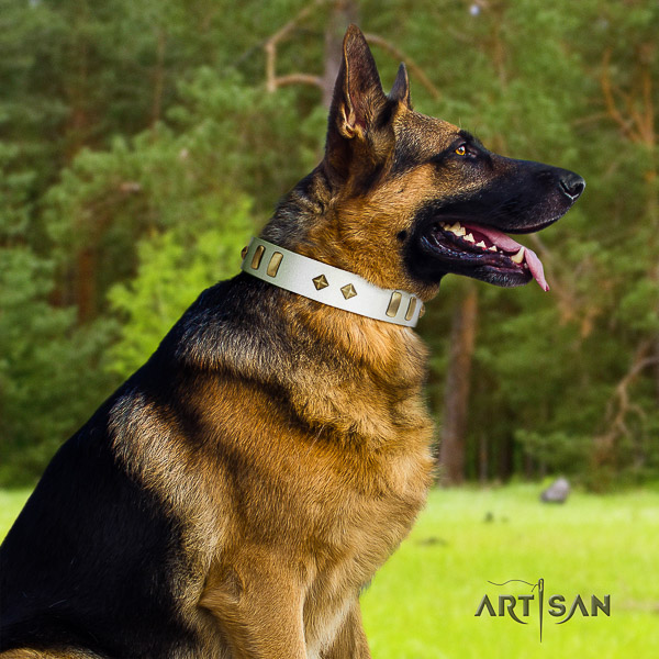 German Shepherd Dog impressive embellished natural genuine leather dog collar