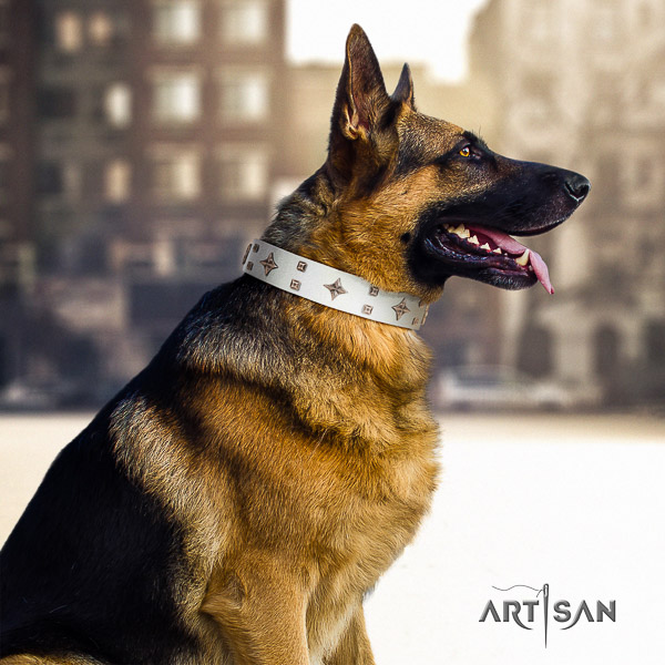 German Shepherd Dog amazing decorated full grain genuine leather dog collar for everyday use