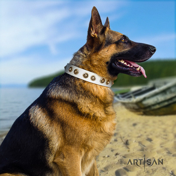 German Shepherd Dog impressive decorated leather dog collar