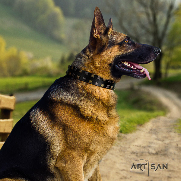 German Shepherd Dog stylish adorned full grain leather dog collar