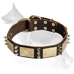 German Shepherd Dog Collar Stylish Dogs
